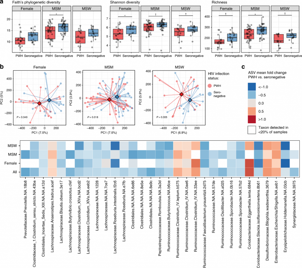 Las diferencias en la composición de la microbiota intestinal son evidentes dentro de los subgrupos de práctica sexual