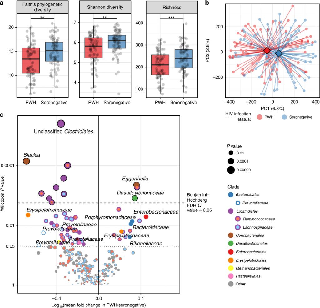 La composición de la microbiota intestinal difiere entre infectados y los no infectados
