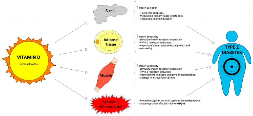 vitamina a y diabetes tipo 2
