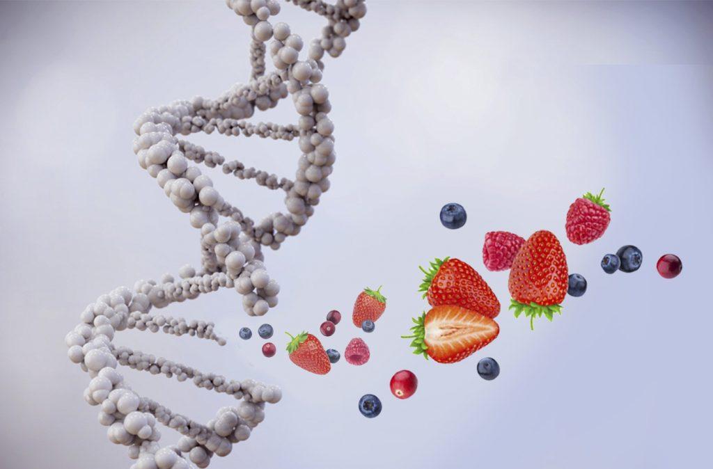Genómica clínica: un nuevo paradigma nutricional de enfoque integrativo
