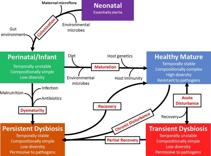 Ciclo de disbiosis y Microbioma por la Escuela de Salud Integrativa
