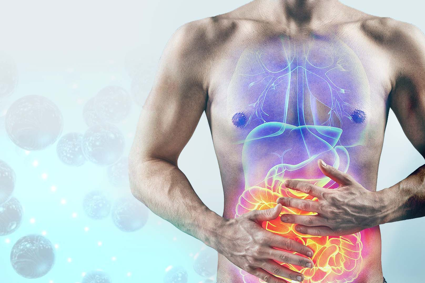 Cómo eliminar tóxicos y metales pesados del organismo a través de la suplementación nutricional